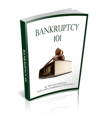 Cover image of Bankruptcy 101